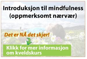 Introduksjonskurs til mindfulness