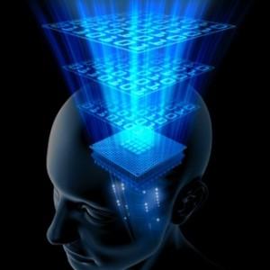 Fire faser i vår bevissthetsutvikling