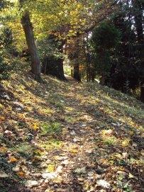 Stille vandring på en klosterskogsti