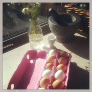 Ferske egg fra nabogården