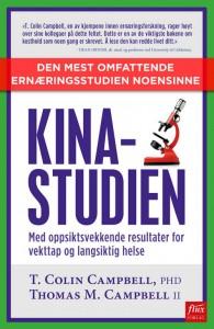 Bokomslag - Kina-studien. Utgitt på Flux forlag