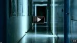 Spøkelset i genene dine – epigenetikk